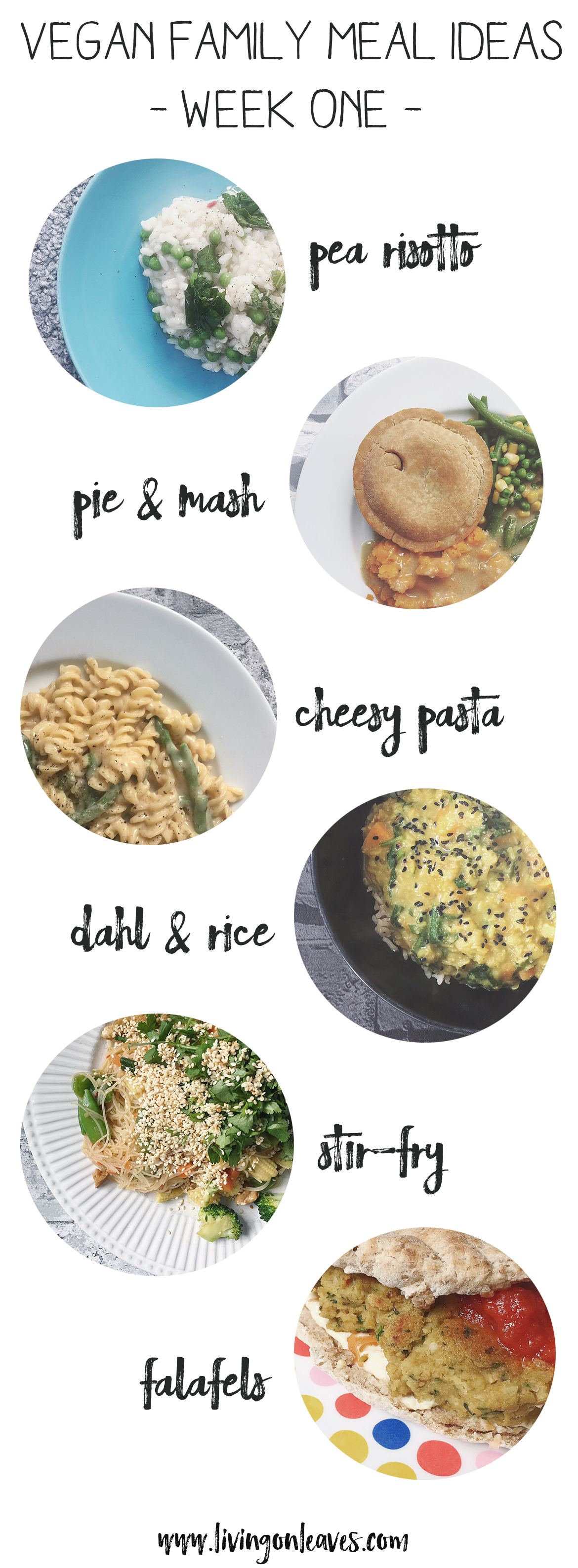 plant based family meal ideas